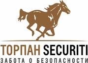 Торпан Securiti